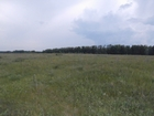 Скачать бесплатно foto Земельные участки Торцевой участок земли в 30 километрах от города 67637969 в Ульяновске