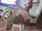 Фотография в   продам развивающие игрушки -черепашки. развивают в Уссурийске 1000
