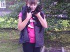 Изображение в Кошки и котята Выставки кошек отдам 2-х котят, которым 7 месяцев , мальчик в Великом Новгороде 0