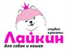 Увидеть изображение Разное Стрижка и триминг собак в салоне ЛАЙКИН 37517388 в Владимире