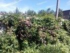Просмотреть фотографию  Продаю загородный дом для отдыха садоводство Машиностроитель! 66487462 в Волгодонске
