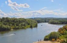 Участок земли 35 сот и дом на берегу реки Дон