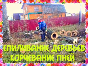 Просмотреть фото Другие строительные услуги Спиливание деревьев и корчевание пней 40378725 в Воронеже