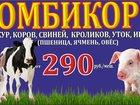 Изображение в Домашние животные Корм для животных Комбикорм для Кур, Кроликов, Уток, Свиней, в Зеленодольске 290