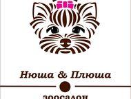Стрижка собак и кошек в Звенигороде Зоосалон Нюша&Плюша Так много разных груминг
